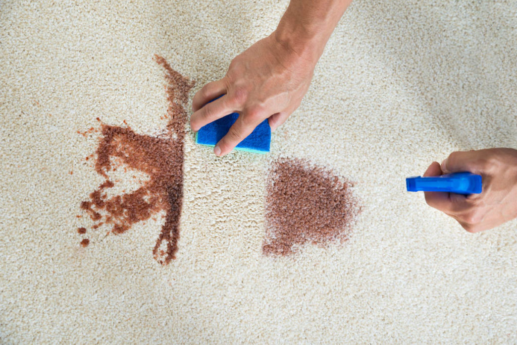 Пятна на ковре в домашних условиях