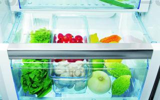 Что положить в холодильник от запаха: выбираем лучший поглотитель запахов