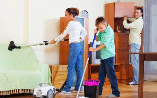 Как удалить запах плесени в квартире и устранить ее основную причину