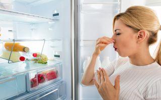 Как эффективно избавиться от неприятного запаха из холодильника?