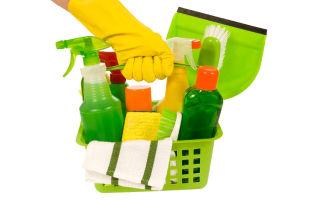 Выбираем лучшее чистящее средство для унитаза