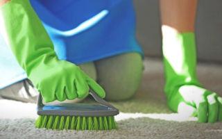 Как правильно почистить ковер в домашних условиях
