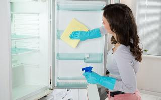 Как правильно помыть холодильник самостоятельно