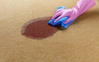 Как быстро почистить ковер в квартире от пятен