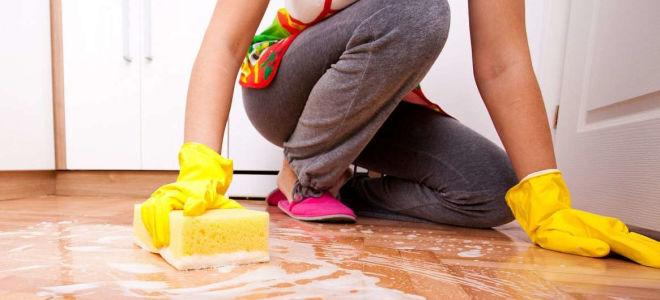 Как быстро помыть полы дома для дезинфекции