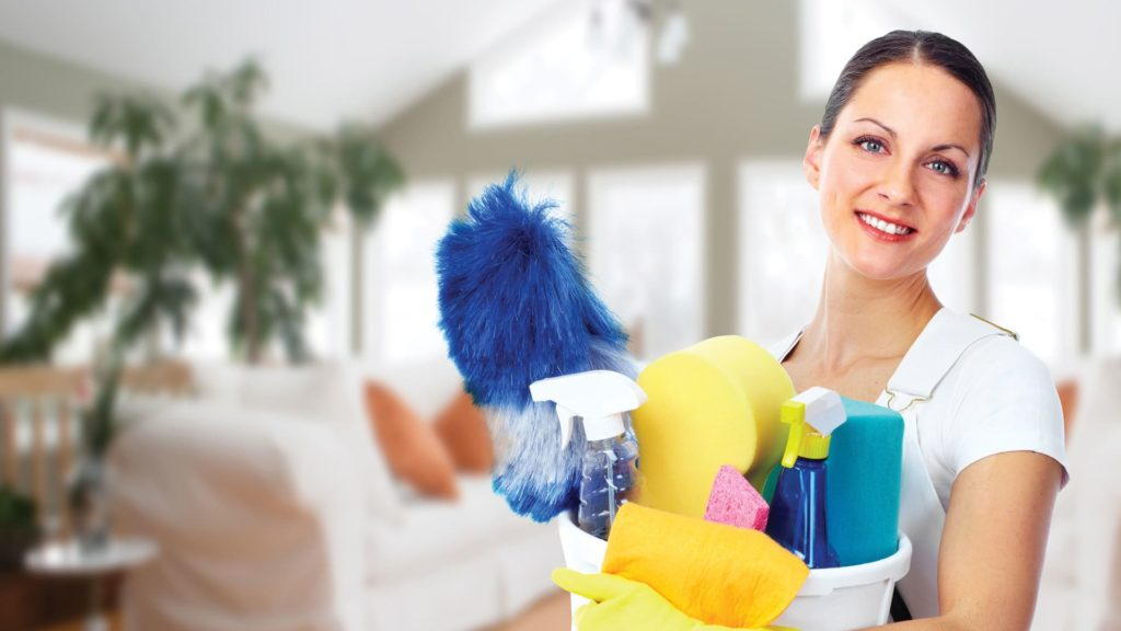 Девушка с предметами для уборки