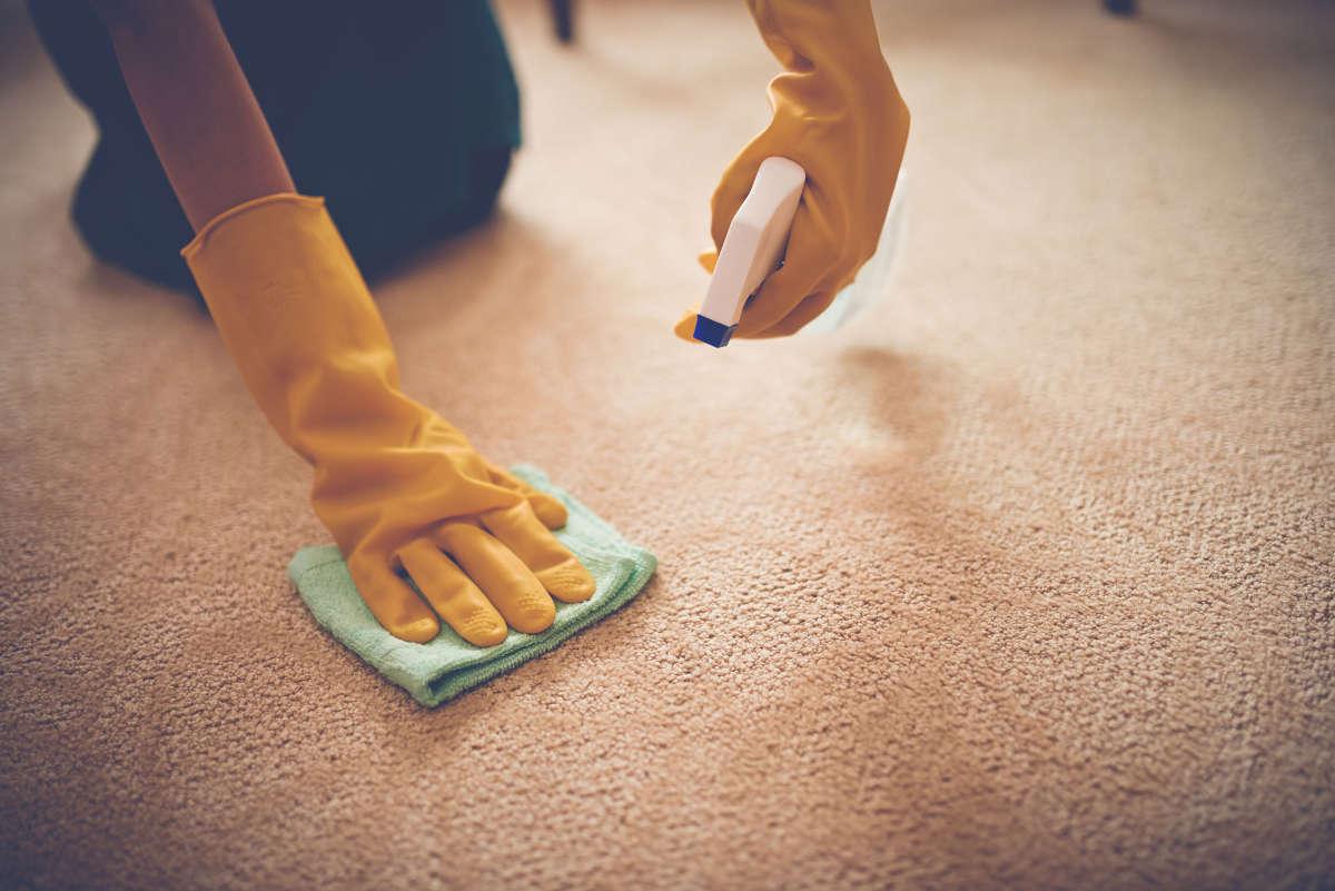 Хозяйка выводит пятно на ковре