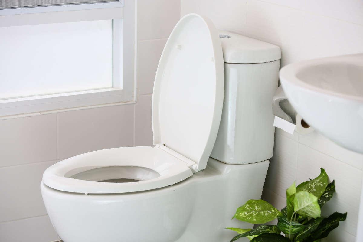 Чистый туалет