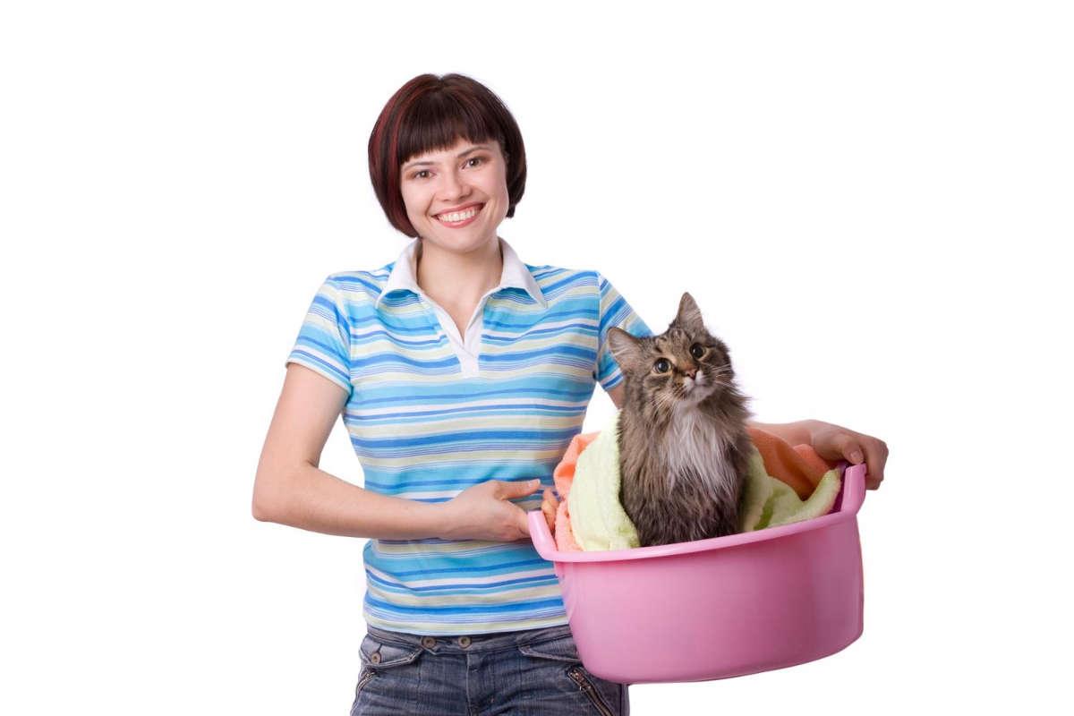Девушка с кошкой в тазу