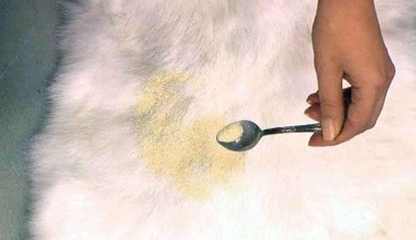 Пятно на меховой одежде