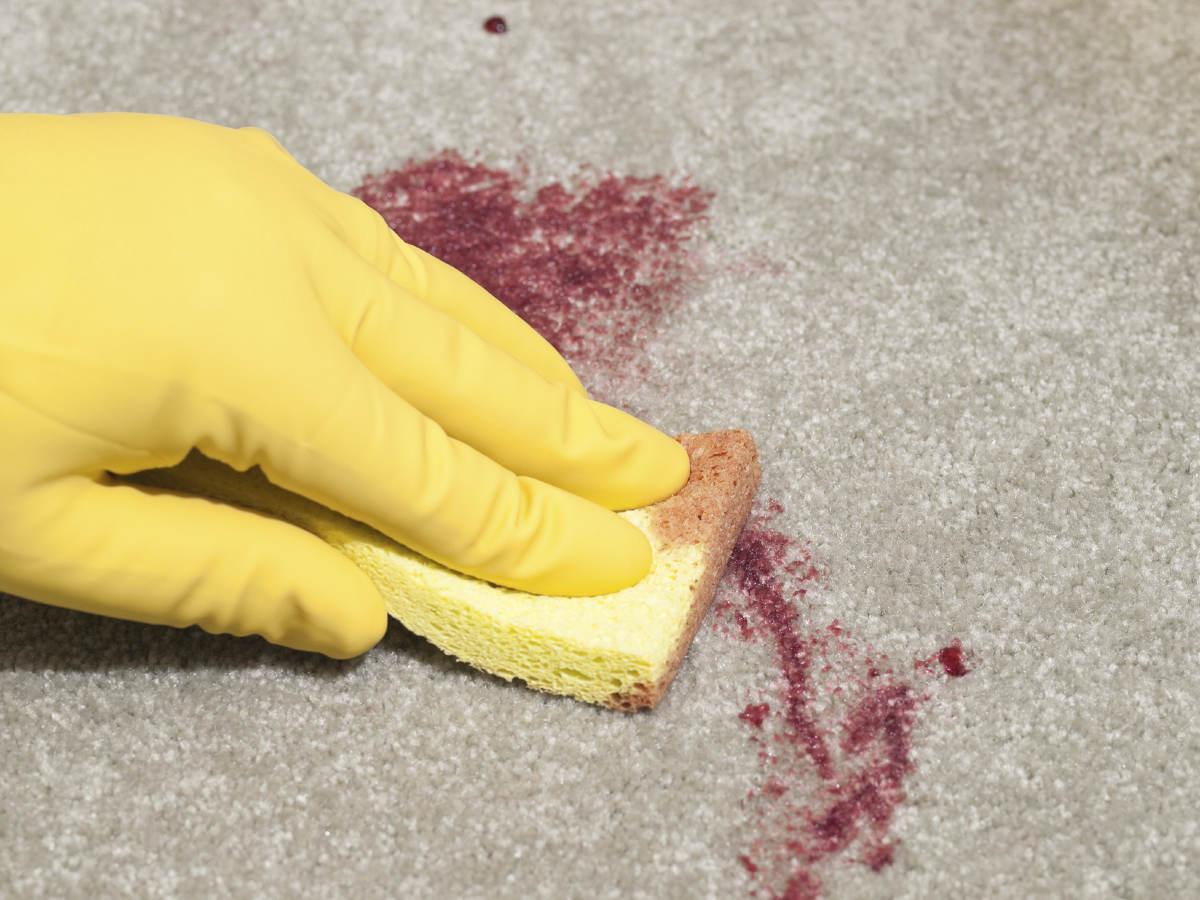 Чистит пятно на ковре