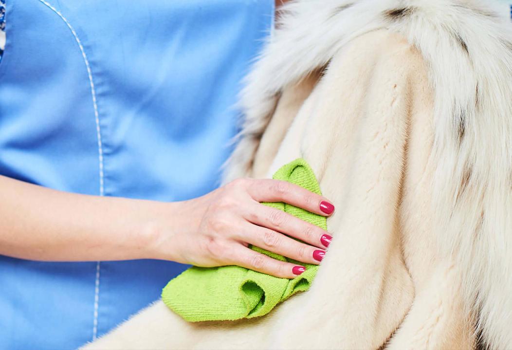 Женщина чистит светлое пальто