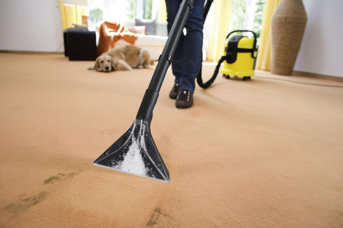 Пылесосит ковёр
